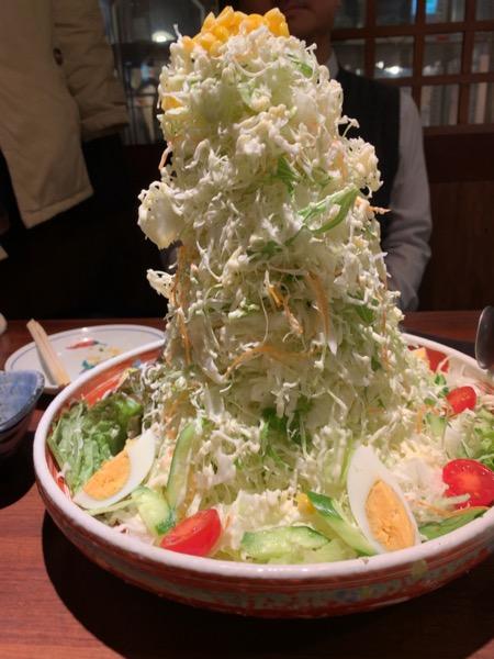 本日のバカ盛サラダ